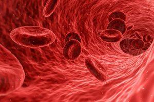 alimentos-elevar-la-hemoglobina