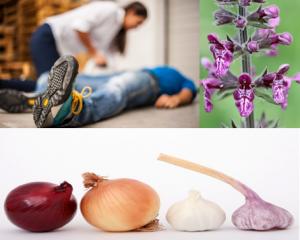Plantas medicinales para la epilepsia