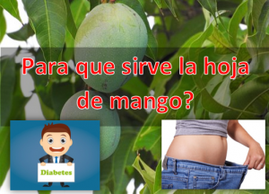 Para que sirve la hoja de mango como planta medicinal