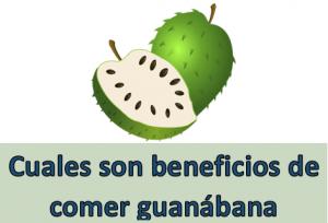 Cuales son beneficios de comer guanábana todos los días