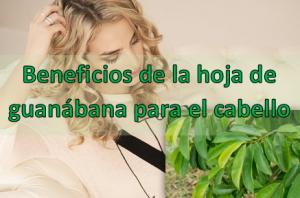 Beneficios de la hoja de guanábana para el cabello