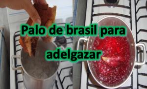 Palo de brasil para adelgazar